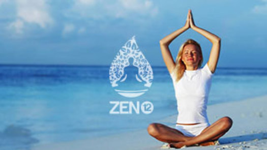 Zen 12 Home Page Image