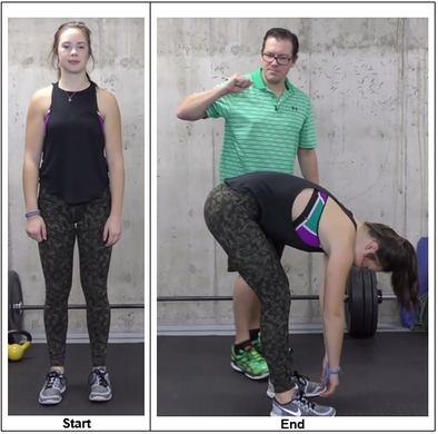 Forward Fold Stretch Exercise