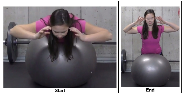 Stability Ball Back Extension Exercise