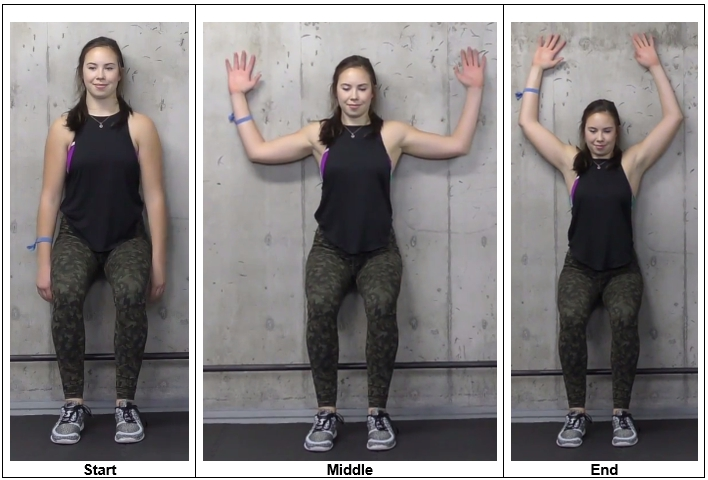 Wall T-Raises Exercise