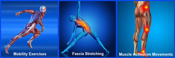 Mobility Exercises and Fascia Stretching and Muscle Activation